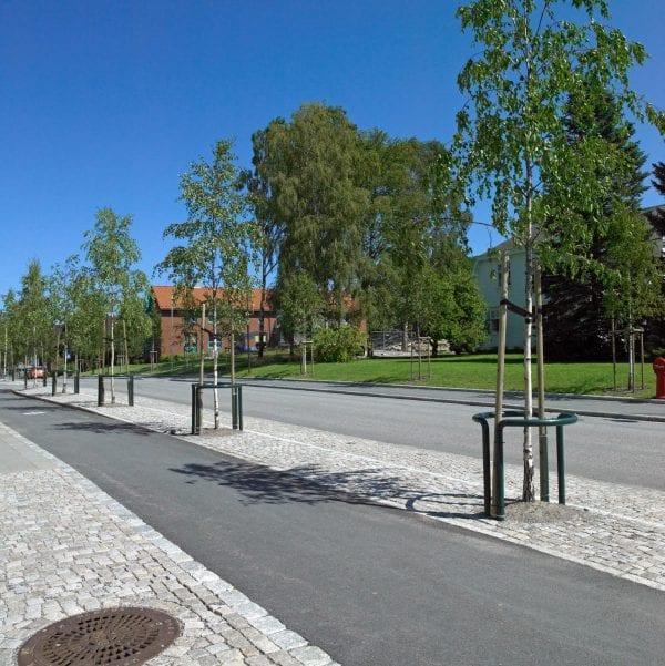 Hengebjørk fk Stange E – BETPENSTA-3
